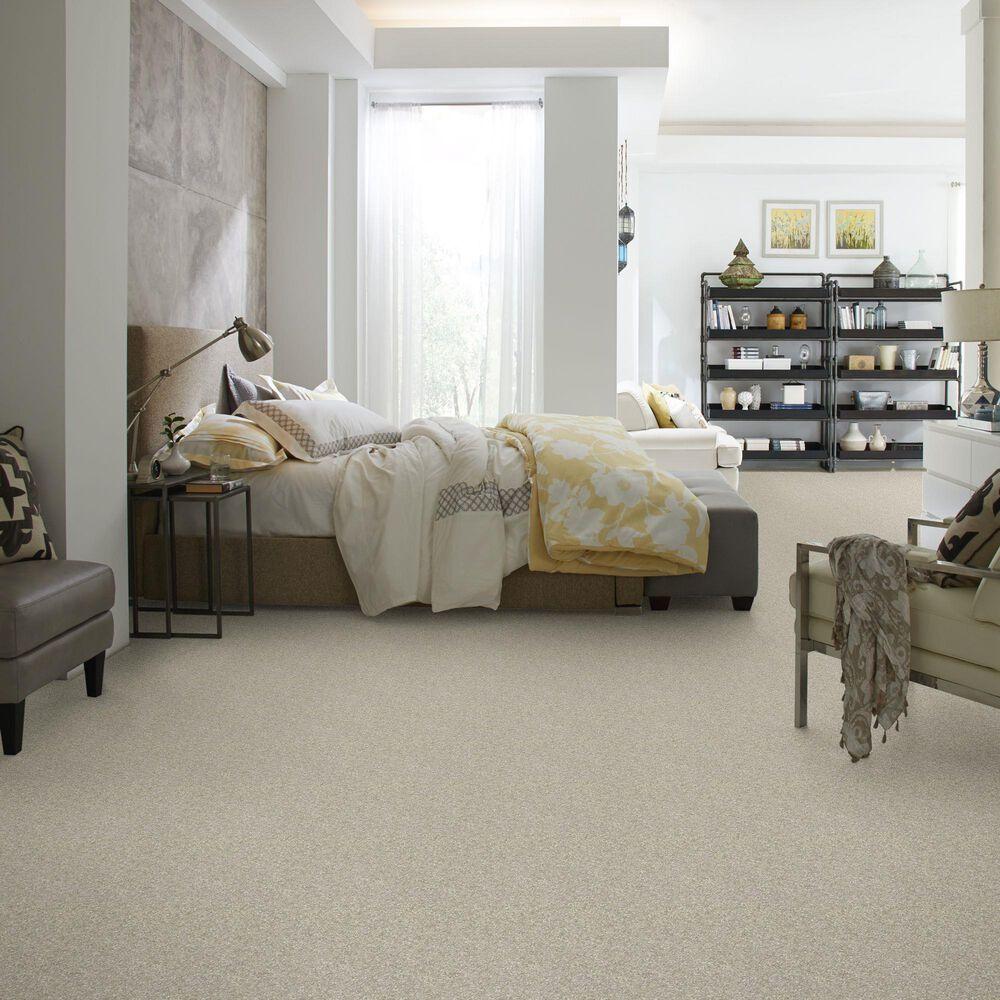 Philadelphia Victory Carpet in Loft, , large