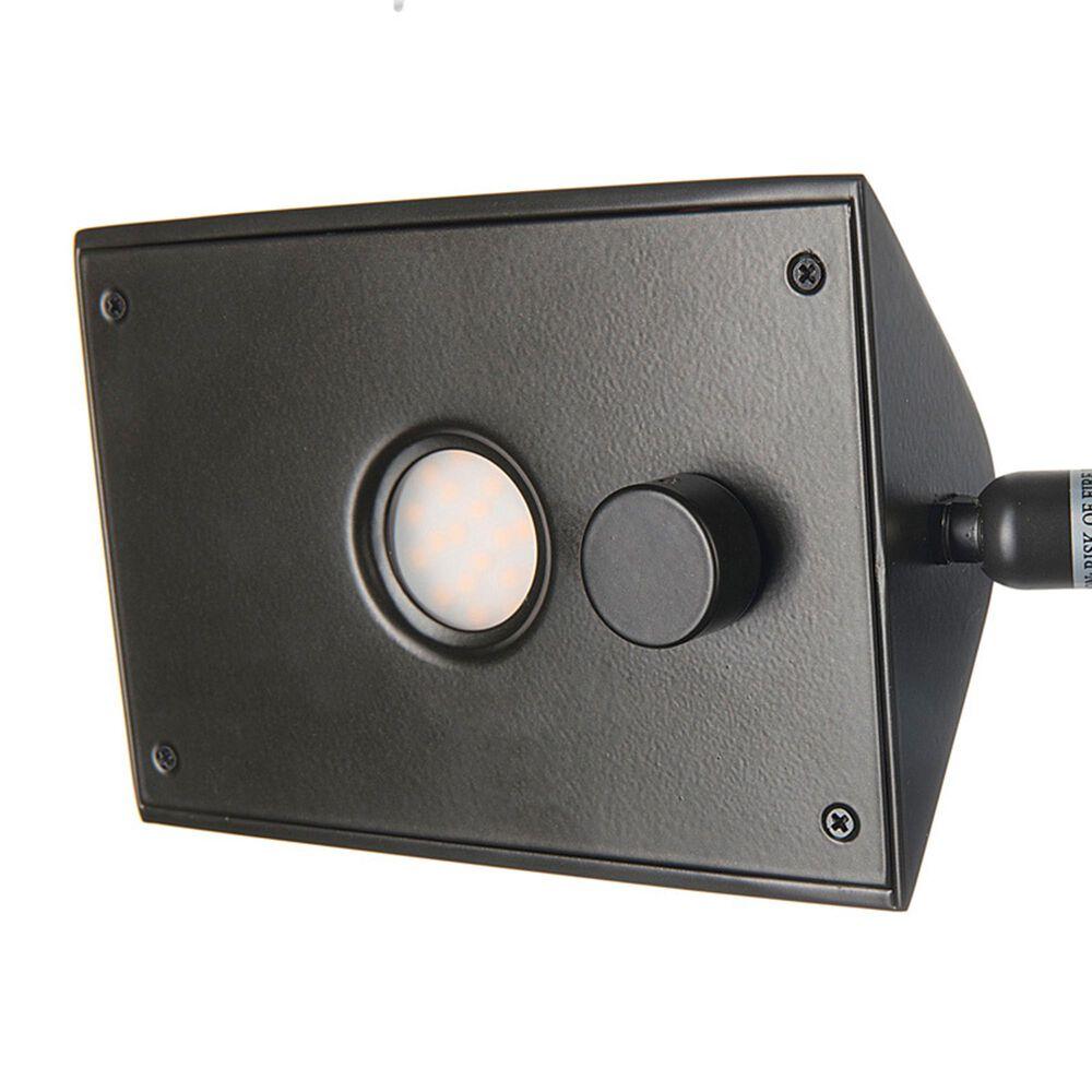 Lite Source Pharma LED Floor Lamp in Dark Bronze, , large