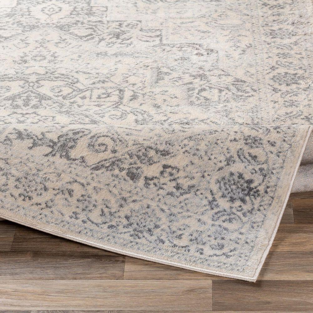 "Surya Monaco MOC-2315 7'9"" x 10'3"" Silver Gray and Cream Area Rug, , large"